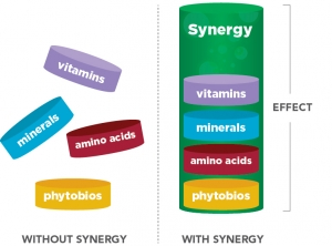 micronutrient synergy effect