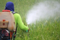 pesticides, roundup, Glyphosate, Herbicides, Dr Rath Research