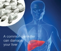 liver damage micronutrients