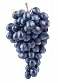 Phytonutrients Resveratrol