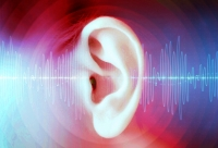 tinnitus hearing loss micronutrients